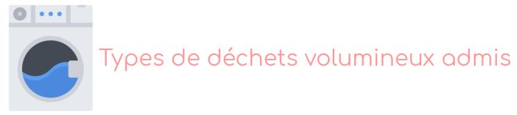dechets saint-maur-des-fosses